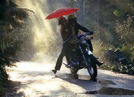 rain3401.jpg